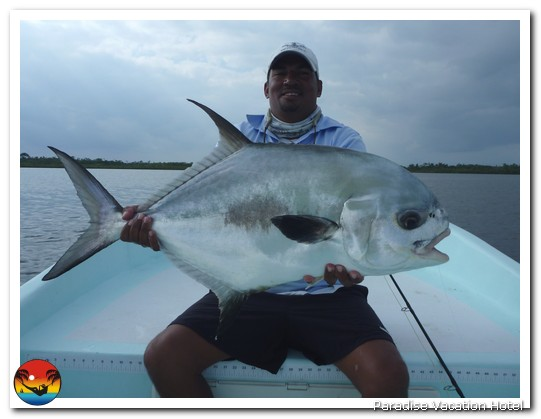 25 pound Permit caught by Dr. Yoshii fishing with Bruce Leslie. by Bruce Leslie