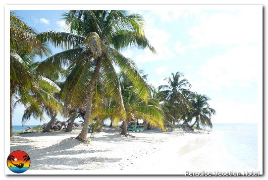 Laughingbird Caye National Park by Henrik Bruun/CreekSolutions